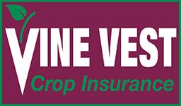 Vine Vest, LLC